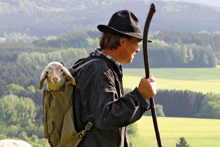 Shepherd with lamb in backpack